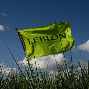 Leblon Celebrates 2016