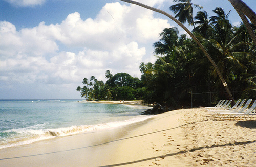 More Rumming in Barbados